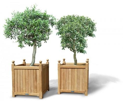 pair-of-extra-large-versailles-planters-teak-garden-wooden-planters-lindseyteak